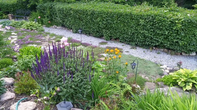 Garden Days Is Canadau0027s Nation Wide Celebration Of The Vital Role Gardens  And Gardening In Our Communities And In Our Lives. Taking Place From  Saturday, ...